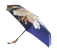 Paraply, Vita liljor